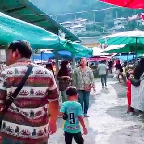 Kamala Frischmarkt