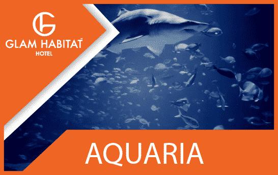 Aquaria Phuket-Funktion